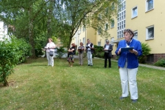 Jury Blühendes Waldtal